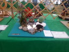 Cheshire Show Craft Entry
